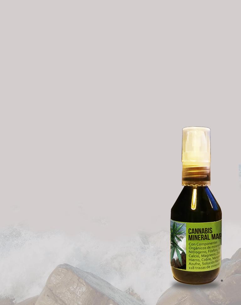 cannabis mineral marino